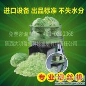 切丝机 进口全自动小型蔬菜切丝机 包菜切丝机 进口蔬菜加