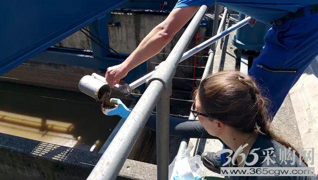 瑞士污水厂蕴含价值超过300万美元的金和银