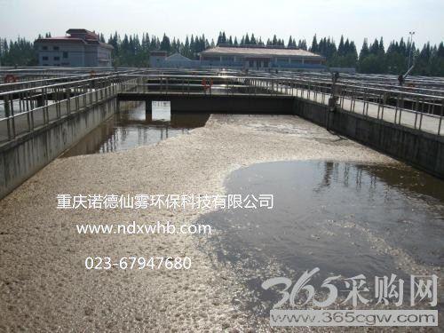 纸厂污水处理-重庆城市废水处理工程设计方案-污水处理